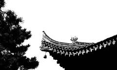 untitled (xi'an, china) (bloodybee) Tags: 365project wildgoosepagoda xian shaanxi china asia travel tree roof shingle highkey bw bell