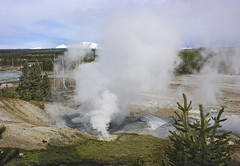 Fumarole at Norris Geyser Basin (spotwolf5) Tags: yellowstonepark thermalfeatures