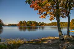 Waywayanda Autumn_4942 (smack53) Tags: smack53 waywayandastatepark trees lake pond autumn autumncolors fall fallcolors fallseason outdoors outside scenic scenery nikon d300 nikond300
