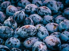Klingon Stuff (Al Fed) Tags: 20160905 croatia hr2016 zagreb prunes plum klingon blue market food fruits star trek tenforward