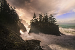 """The Reason"" (J.R. Moran) Tags: light life happiness hope power love pnw oregon pacific ocean rocks redwoods landscape seascape sonya7rii dream me beautiful amazing"