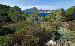Sa Dragonera Mallorca (Dmitriy Sakharov) Tags: sa dragonera mallorca spain balearic travel islands