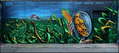 Caligr x Pesca x Djalouz (2AC-PSH-TPN) (Chrixcel) Tags: skull vanité skeleton têtedemort graff graffiti painting ogm maïs fresque caligr pesca djalouz 2ac psh tpn monsanto