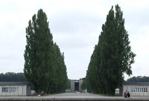 Avenue, 06.07.2012.