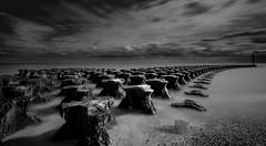 Conformity (Susie Potter) Tags: beach sea groynes longexposure suffolk clouds sky water