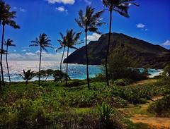 Makapu'u (jcc55883) Tags: makapuu makapuubeach makapuupoint ocean sky clouds pacificocean waimanalo kalanianaolehighway hawaii oahu ipad ipadair
