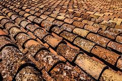 Spain - Malaga - Ronda - Roof Tiles (Marcial Bernabeu) Tags: marcial bernabeu bernabu spain espaa andalucia andaluca andalusia malaga mlaga ronda andalusian andaluz andaluza andaluzas teja tejas tile tiles roof tejado