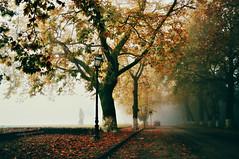 * (PattyK.) Tags: ioannina giannena epirus ipiros mycity whereilive lovelycity autumn 2016 amateurphotographer greece griechenland hellas ellada balkans nikond3100 ιωάννινα γιάννενα παραλίμνιο μώλοσ ήπειροσ βαλκάνια ελλάδα ηπόλημου όμορφηπόλη φθινόπωρο ομίχλη fog autumnmorning november lakeside lakefront bythelake