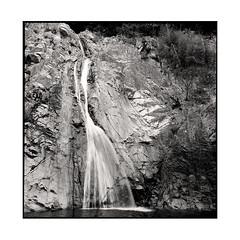 waterfall  kobe, japan  2015 (lem's) Tags: waterfall forest foret cascade kobe japon japan rolleiflex planar