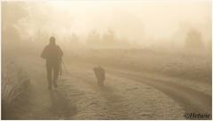 Walking togeher (HP019916) (Hetwie) Tags: natuur frost rijp nature heide kou ijs nando nachtvorst walking zonsopkomst ochtend sunrise strabrecht frozen vorst strabrechtseheide ice bruc heather lierop noordbrabant nederland