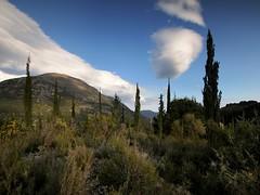 20160324-132F (m-klueber.de) Tags: 20160324132f 20160324 2016 mkbildkatalog griechenland ionische inseln kefalonia zypresse zypressen bergland wolken abend