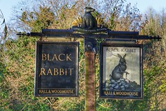 The badger and the rabbit. (Nick Fewings 4.5 Million Views) Tags: december brew beer fewings nick country wood signage sign unusual uk sussex arundel woodhouse hall brewery pub badger rabbit black