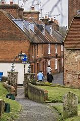 Entrance and exits. (gardengeorgie) Tags: farnham surrey squirrel daffodils path church