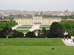 Schonbrunn from the Gloriette