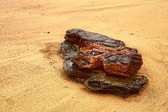 Sculpted Rock (paulhollins) Tags: newcastle australia newsouthwales aus thejunction
