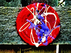 Jackson Pollock's Jam Jar Lid (Steve Taylor (Photography)) Tags: wood red white art texture fence strawberry berry paint purple timber nail grain gap run jar drips splash jam jacksonpollock nailed poured splodge