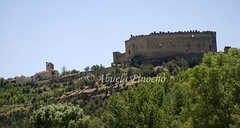 PEDRAZA (SEGOVIA-SPAIN) (ABUELA PINOCHO ) Tags: españa spain segovia castillo pedraza castillayleon