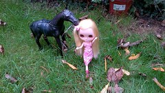 This is auntie blythes horse.