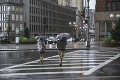 L1005650 (sswee38823) Tags: street leica city urban rain boston umbrella m bostonma leicam noctilux095 noctiluxm50mmf095asph leicamtype240
