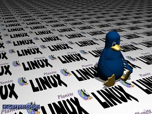 plinuxwall_800x600