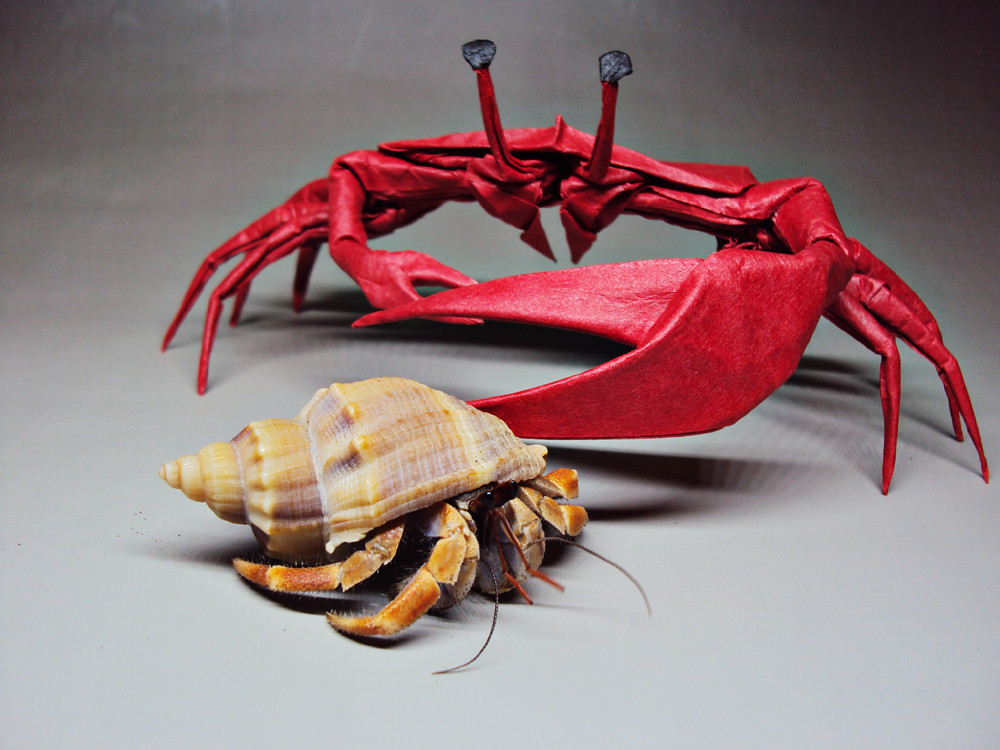 crab research paper International journal of scientific & engineering research,  mechanical properties of dungeness crab based  in their paper,.