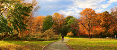 Take Me Home, Country Roads (HOWLD) Tags: park autumn fall leaves bicycle canon foliage biker thefall kissenapark howd takemehomecountryroads 5dmiii 2470mmf28ii howardlaudesign