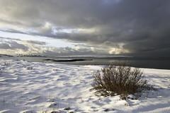 (geh2012) Tags: snow clouds iceland reykjavík ísland snjór ský geh geldingarnes leirvogur gunnareiríkur leirvogshólmi