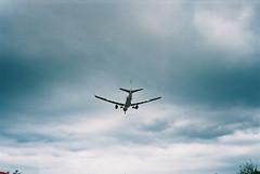 [ ] (Kerb 汪) Tags: sky film airplane taiwan ear taipei analogue juli murmur 台灣 台北 konicac35 飛機 2013 konicac35ef lucky200 呢喃 201307 konicac35film043 印象110013812 f1000028a