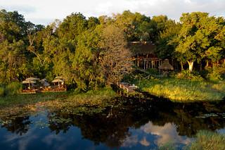 Botswana Okavango Delta Photo Safari 59