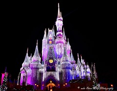 Explored : Magic Kingdom (wdwSteve) Tags: magic kingdom disneyworld2013