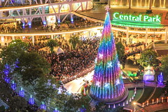 The Big Christmas Tree | Central Park, Jakarta