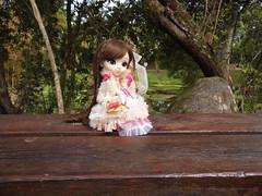 Fleure en éclosion (DidiTisseDesLiens (AB)) Tags: parque iris doll pullip 2012 2014 poupée parck 2011 2013 nanaette diditissedesliens