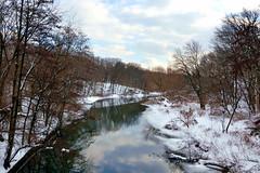 The Bronx River (Eddie C3) Tags: newyorkcity nature rivers bronxzoo winterlandscapes natureinthecity bronxriver naturewalks nikond7000