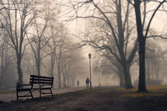 again HBM. (Eggii) Tags: park mist fog mood lodz awalkthroughthepark happybenchmonday