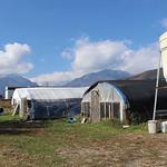 松下農園風景2
