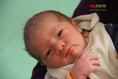 ENZO (vincphotography) Tags: portrait baby enzo bebe enfant