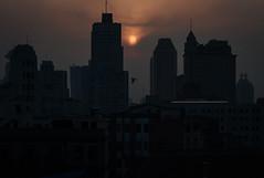 Skyline Pigeon (scatteredpixel) Tags: china leica city travel light sunset sun bird silhouette skyline 50mm flying asia shanghai voigtlander m8 f11 cityline