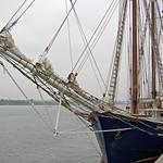 Rostock - Segelschiff »Santa Barbara Anna« im Rostocker Stadthafen (2) thumbnail