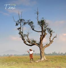 TANI (alzikr) Tags: air malaysia farmer kampung tani terengganu petani manir kebur