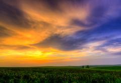 IMG_1717_18_19_20_21hdr-1.jpg (kendra kpk) Tags: sunset field june southdakota landscape spring winner hay alfalfa 2014 trippcounty dakotawindsphotography kendraperrykoski