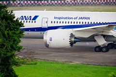 20140714A-CD4601 (martinlow) Tags: 787 飛機 松山機場 夢幻客機