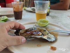 Ostion en su Concha con su Sal, Limn y Salsa - Mandinga - Veracruz - Mxico (Luis Enrique Gmez Snchez) Tags: mxico mexique messico    luisenriquegmezsnchez  canont3i