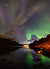 autumn (John A.Hemmingsen) Tags: auroraborealis ersfjordbotn aurora autumn nordnorge night northernlights nikond600 zeissdistagon15mm zeiss