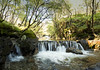 streaming (SkyeBaggie) Tags: isleofskyescotland skye scotland waterfall trees strath
