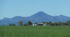 Looking towards Mt Kaputar National Park, from the Newell Highway. (The Pocket Rocket) Tags: mtkaputarnationalpark newellhighway nsw australia
