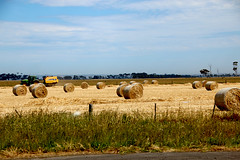 A passenger's view of the M80 and M1 (26) (Boobook48) Tags: freeway highway victoria road princesfreeway agriculture hay bales farm tractor work
