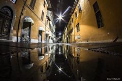 286#365 Vie infinite (Fabio75Photo) Tags: road citt notturna luci riflessi acqua pisa centro bicicletta