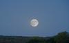 Hunter's Moon over Hopewell NJ (MNixonPhoto) Tags: moon centraljerseyexists huntersmoon hopewell nj supermoon newjersey