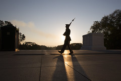 2016-10-18_8539 (rexographer) Tags: unknownsoldier tombguard sentinel arlingtonnationalcemetery
