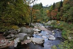 Herbst an der Murg (Hugo von Schreck) Tags: hugovonschreck outdoor landschaft germany murg forbach bach blackforest canoneos5dsr tamron28300mmf3563divcpzda010 fantasticnature europe